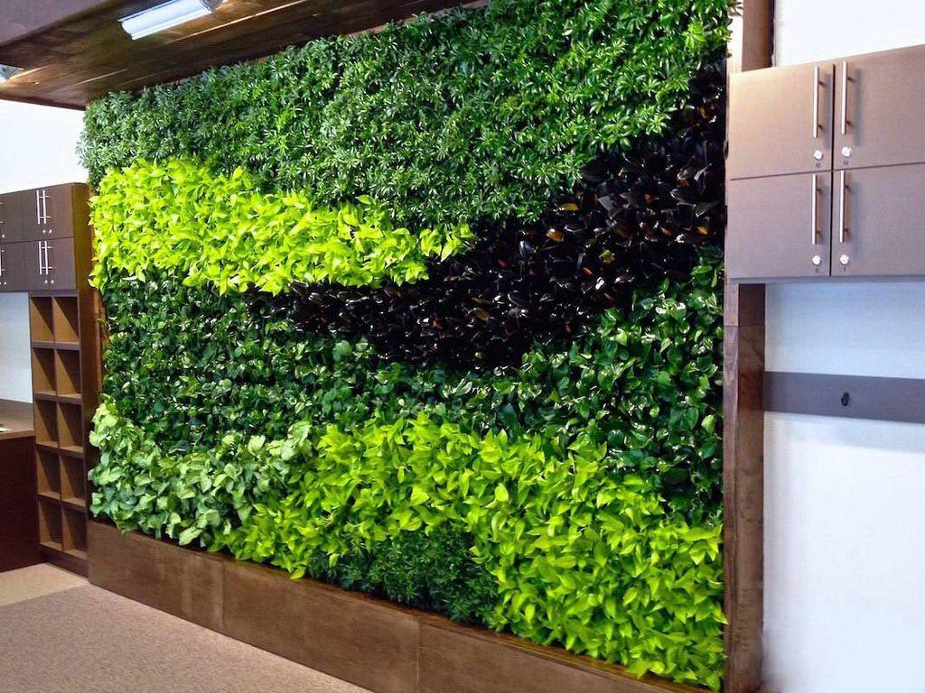 зеленая стена фото помощью различных